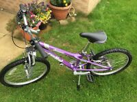 Girls Specialised Dawes Redtail 20inch bike