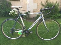 Claud Butler Torino SR3 road bike