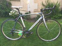 Claude Butler Torino SR3 road bike