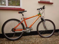 Raleigh mountain bike. Front suspension. Small. Good condition