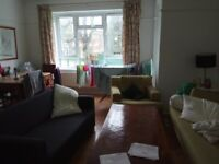 I rent a room in a very nice place in camberwell