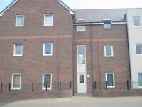 2 Bedroom ground Floor Flat, Romulus Court, Fenham, NE4 9AW