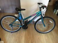 Small Ladies Bike