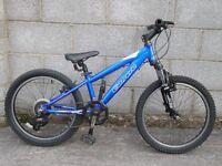 blue bike carrera 20''