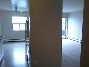 """Kingsberry Towers - """"We'll make you feel at home"""" last one left! London Ontario image 2"""