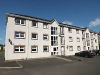 DEPOSIT OPTION!!! 2 Bed flat to rent / for let in Hamilton