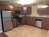 126 WESTON - AMAZING 2 BEDROOM - AVAIL NOW!!