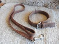 Dog collar and lead top quality nubuck leather