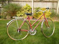 Ladies 5 Speed Bike in Perfect Order Size 53CM
