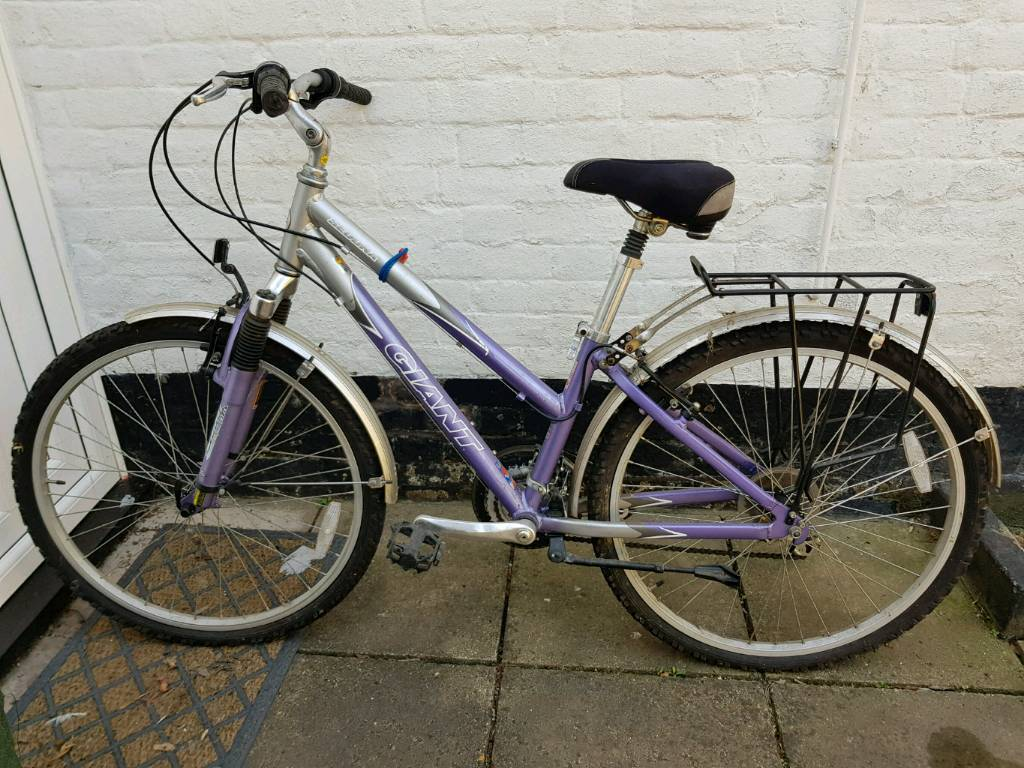 as a pair mens and ladies retro style trekking bikes in