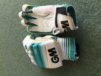 Cricket batting gloves - junior, left-handed