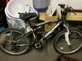 Falcon sentinel mountain bike