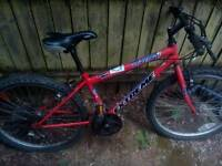 Universal extreme mountain bike for young teen / child