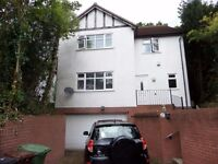 Double Room to let in a professional house share in Wolverhampton- large 4 bed detached property