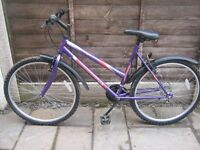 WOMENS WILDTHING MOUNTAIN BIKE