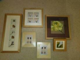 NEXT COLLECTION OF ASSORTED FLOWER PICTURES, IN WOOD FRAMES