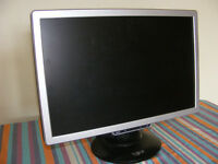 19 inch Flatscreen Computer Monitor