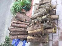 Free logs in north Finchley