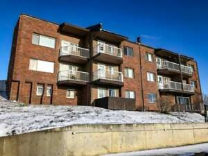 $399 Security Deposits - 2 Bedroom Apartment for Rent in Dawson