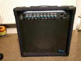 Rockwood by hohner 30w guitar amp