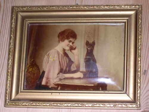 ANTIQUE MINIATURE PINSCHER / MIN PIN DOG FRAMED COLOUR PRINT 1910