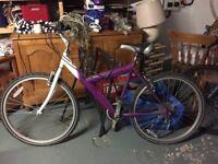 Mountain bikes x 2