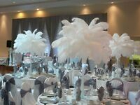Ostrich Feather Centrepiece To Hire