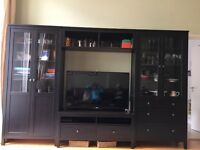 TV storage entertainment system