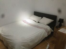 Double Room Male Wanted £600 PCM CANADA WATER