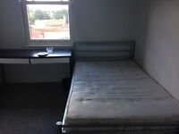 Double Room in Bright Central Exeter Flat