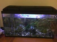 3ft fish tank.