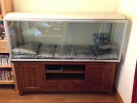 "Fish Tank / Aquarium - Very Big! (5'2"")"