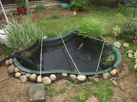 Pre formed garden pond for sale/ Atlantis Hawaii with pump & filter.