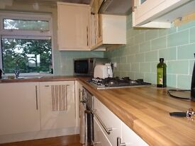 Spacious top floor 2 bedroom apartment newly refurbished in Barnes close to amenities SW13