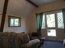 Spacious Studio Flat, Loft conversion, Countryside location