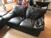 Free leather 2 seater couch