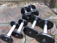 Fixed cast iron dumbbells