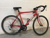 Diamondback racing bike