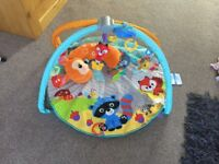 Fisher-Price Moonlight Meadow gym