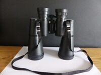 Nikon Lookout II Binoculars 10 x 50. A very clear image and light to handle.