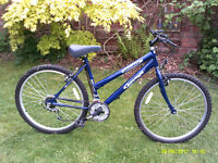 STEALTH SAVAGE MOUNTAIN BIKE ONE OF MANY QUALITY BICYCLES FOR SALE