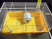 Yellow dwarf hamster cage