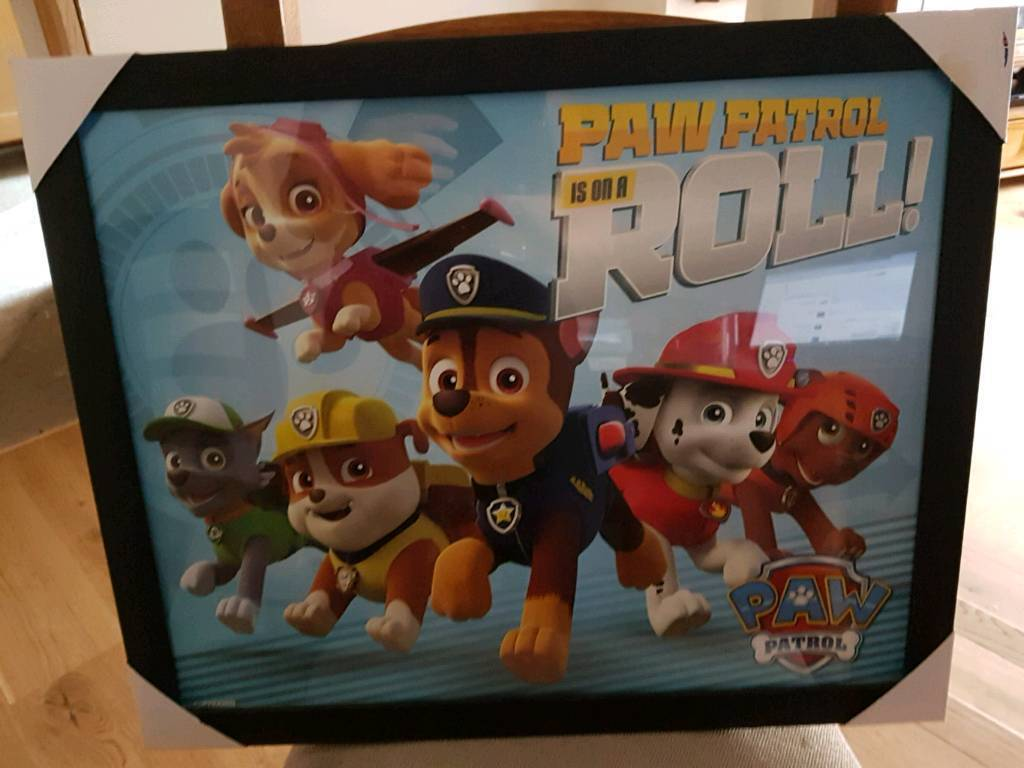 Paw patrol picture