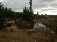 River Front Pasture Land 160 Acres Northern Alberta