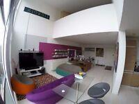Modern office / desk space - £25 per day