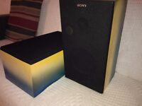 SONY Loudspeakers - Custom Paint Job - (PAIR)