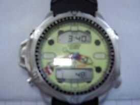 Citizen diver's watch
