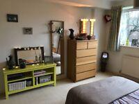dbl , bright room in Putney