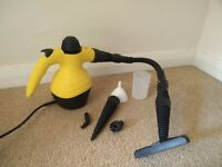 Steam cleaner - hand held