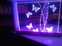 Butterfly lght